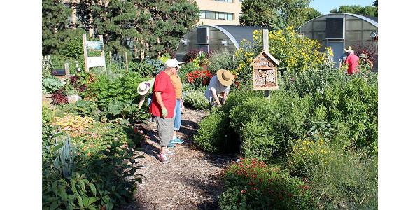 Extension Master Gardener volunteer program