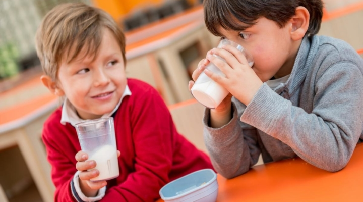 NMPF applauds USDA support for milk options