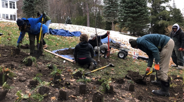 Landscaping for Water Quality in the Finger Lakes