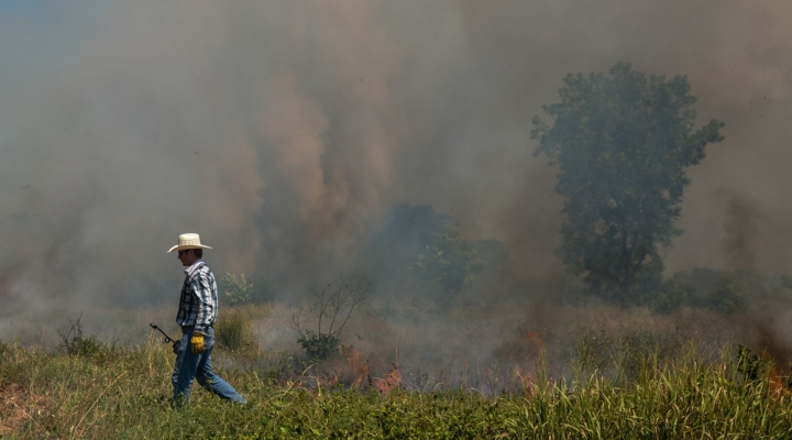 Prescribed burns aid landowners in management