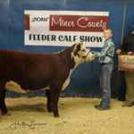 Ty Bergh, Florence received Reserve Champion Hereford Breeding Heifer and Fourth Place Overall Breeding Heifer during the Miner County 37th Annual Feeder Calf Show held November 23, 2018 at the 4-H Grounds in Howard. (Courtesy image)