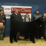 Kody Foley, Cheyenne, Wyo., received Reserve Champion Commercial Steer and Third Place Overall Market Beef during the Miner County 37th Annual Feeder Calf Show held November 23, 2018 at the 4-H Grounds in Howard. (Courtesy image)