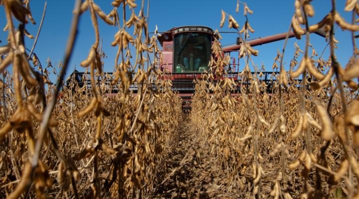 Biodiesel market in EU opens for U.S. soybeans