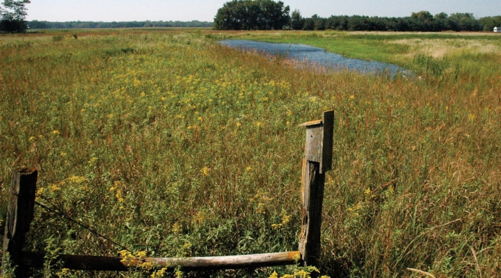 USDA seeks input on wetland determination
