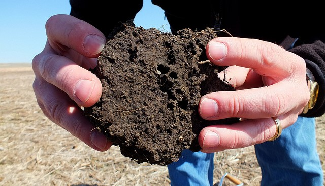Project to evaluate soil health measurements