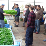 Nelson and Pade, Inc.®, the world's leading company on aquaponics, is offering a brand new, one day class on aquaponic food production in Montello, WI on February 15th. (Courtesy of Nelson and Pade, Inc., Copyright 2019, All Rights Reserved)