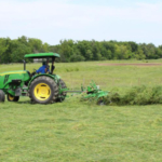 A producer cutting alfalfa. (Photo courtesy of Chris Teutsch, UK forage extension specialist)