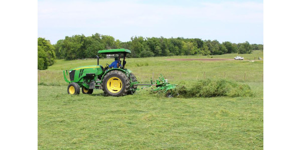 Conference to take a fresh approach to alfalfa