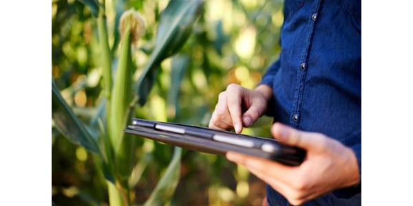 Producers can learn to use technology that increases their farm's bottom line through data-based decisions and planning. (Courtesy of MSU Extension)
