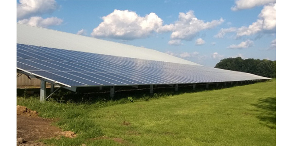 Technology from Emergent Solar Energy, based in the Purdue Research Park, is helping to reduce energy costs on a northern Indiana hog farm. (Image provided)
