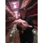 Jody Kremer started at MSU with plans to become a veterinarian, but soon found her passion was in the poultry industry. She applied for an internship through Michigan Allied Poultry Industries as part of the process for a Midwest Poultry Consortium scholarship, and was accepted to work at Sunrise Acres, a family-owned egg farm in Hudsonville. (Courtesy of Michigan Allied Poultry Industry)
