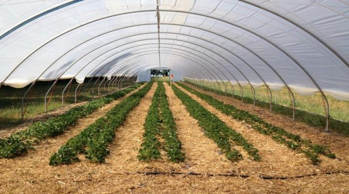 2019 Maine Vegetable & Fruit School