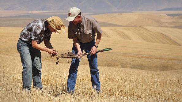 Healthy soil is key to feeding the world