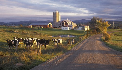 VT dairy industry recognizes field achievements