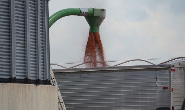 Farmers reminded about dangers of grain bins