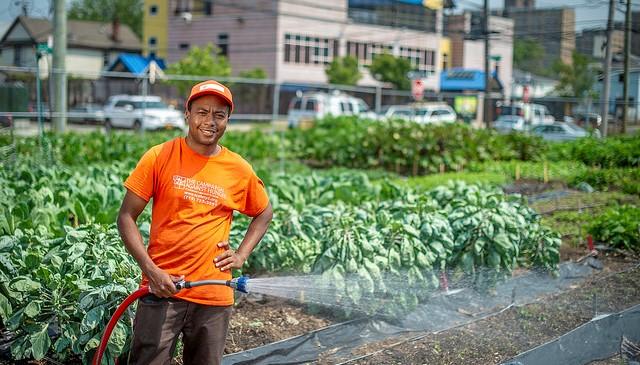 How urban farms can improve food security
