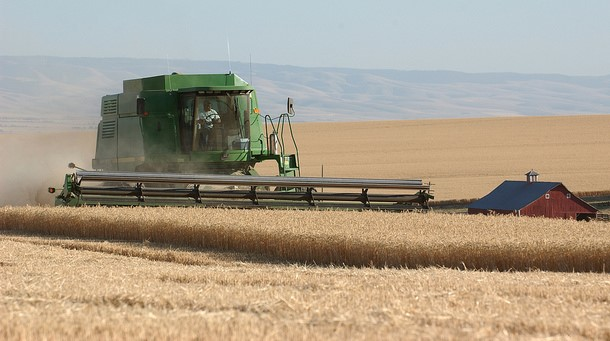 U.S. wheat growers on trade mitigation funds