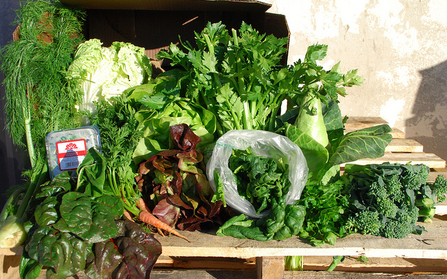 Meet Your Farmer CSA sign up day March 1