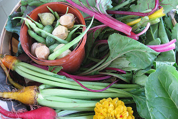 ASAP offers CSA fairs in Asheville, Boone in March
