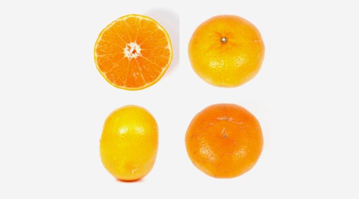 'Marathon' Mandarin gives growers advantages