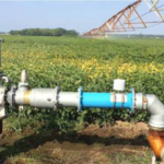 There are several concerns regarding a water system inspection from a food safety perspective and compliance to the Food Safety Modernization Act Produce Safety Rule. (Photo by MSU Extension)
