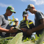 Iowa State University Extension and Outreach is hosting a field crop scouting school on Saturday, March 30 at the Field Extension Education Laboratory in Boone. (Courtesy of ISU Extension and Outreach)