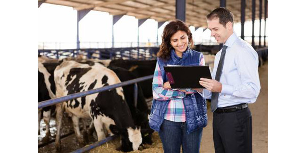 Navigating a challenging farm economy