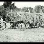 Early day hay harvest at the campus farm in Curtis. The high school opened in 1913 and the NU college started in 1965. (NCTA photo archives)