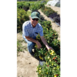 Dr. Michael Bartolo, director of the Colorado State University Arkansas Valley Research Center, Rocky Ford, Colo., has been selected the 2018 Colorado Fruit & Vegetable Growers Association's (CFVGA) Robert Sakata Member of the Year. (Courtesy of CFVGA)