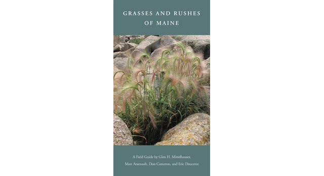 Grasses and Rushes of Maine book release