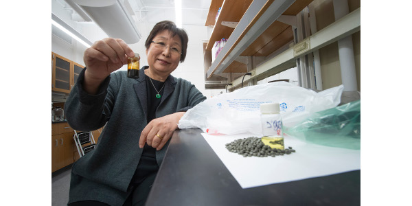 A chemical conversion process developed at Purdue University allows researchers to turn recycled shopping bags into pellets into oil as shown in the bottle being held by Linda Wang, the Maxine Spencer Nichols Professor in the Davidson School of Chemical Engineering. Using distillation, that oil is separated into a gasoline-like fuel in the bottle in the counter and a diesel-like fuel not shown. (Purdue Research Foundation image/Vincent Walter)