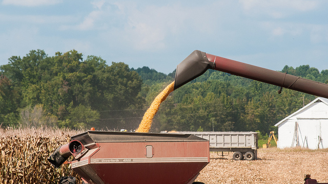Leading agriculture organizations endorse USMCA