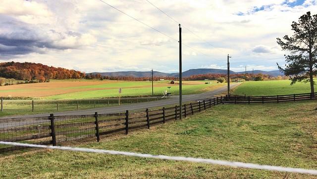 New rules amid farm contamination concern