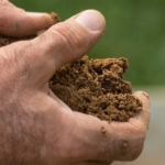 soil health hands U.S. Department of Agriculture, Flickr/Creative Commons