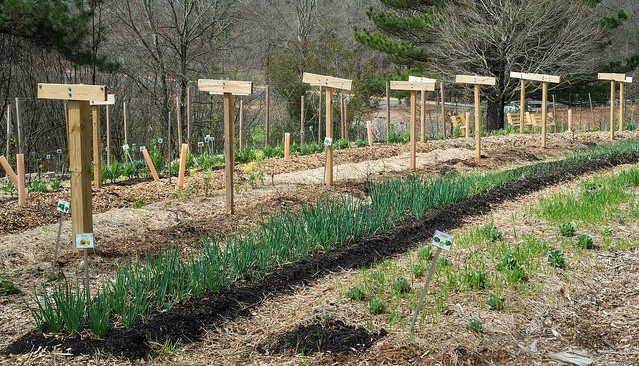 UMass offers agricultural leadership class online