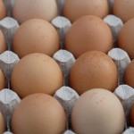 eggs (Jonathan Pearson, Flickr/Creative Commons)