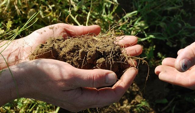 Soil & natural resources workshop