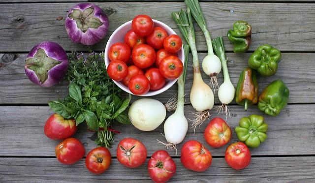 Monadnock Farm Share Program launches