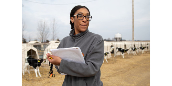 Rekia Salter, currently a SciMed graduate research scholar in the Jennifer Van Os lab at UW–Madison, observes and times a milk feeding of calves at Emmons Blaine Dairy Cattle Research Center at Arlington Agricultural Research Station. Salter is preparing for a study on social housing for calves. (Photo by Michael P. King/UW–Madison CALS)