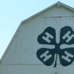 4-H (DM, Flickr/Creative Commons)