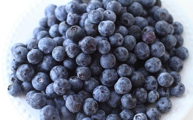 UF blueberry breeding program
