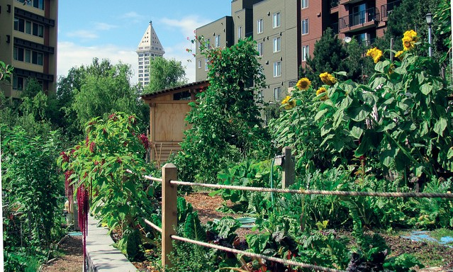 CCCD receives urban ag conservation grant