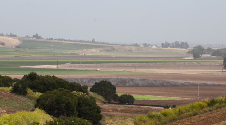 California farm (U.S. Department of Agriculture, Flickr/Creative Commons)