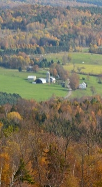Rural Vermont to host dairy farmer panel