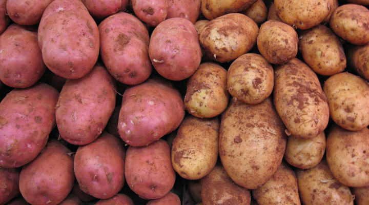 Appointments to Potato Promotion Board