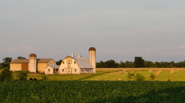 Celebrating Agriculture in Ontario County