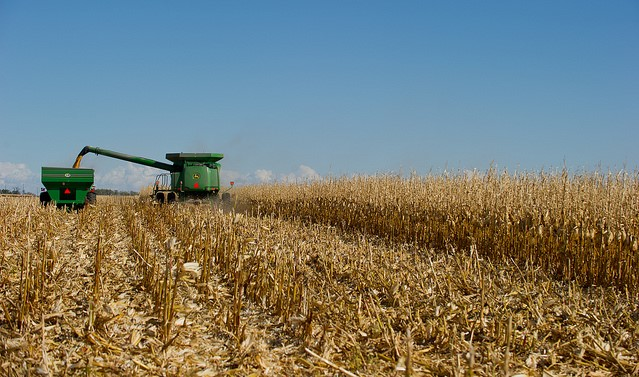 EPA rule pits oil producers against corn farmers