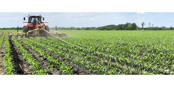 In an on-farm experiment near Le Sueur, Minnesota, University of Minnesota Extension researchers tested several nitrogen sources for sidedressing corn. (Courtesy of University of Minnesota Extension)