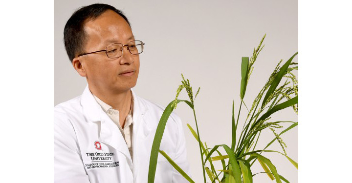 Wang is OSU Distinguished Scholar