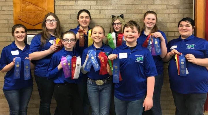 4-Hers compete in horse knowledge contest